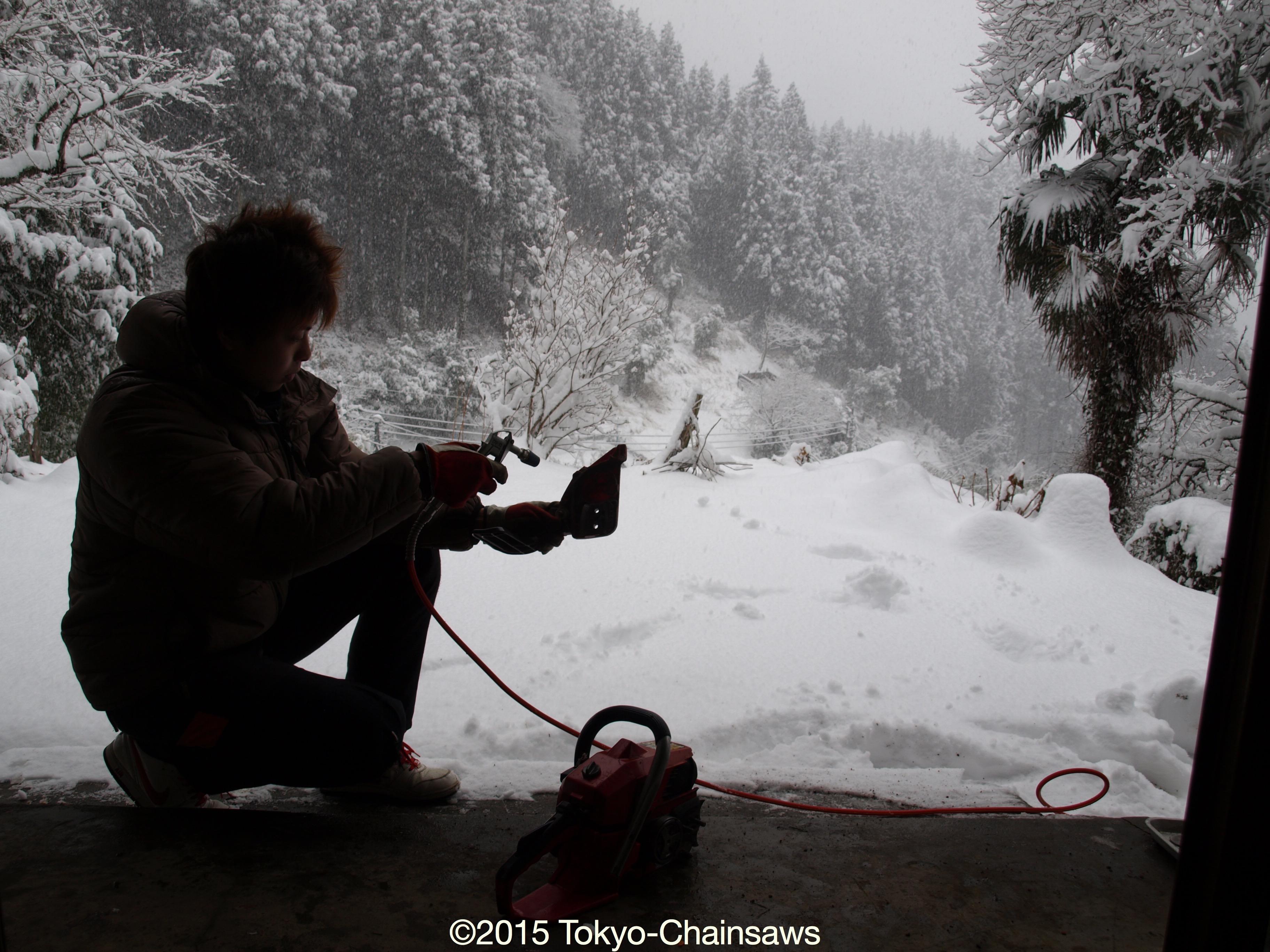 またまた大雪(2月29日)