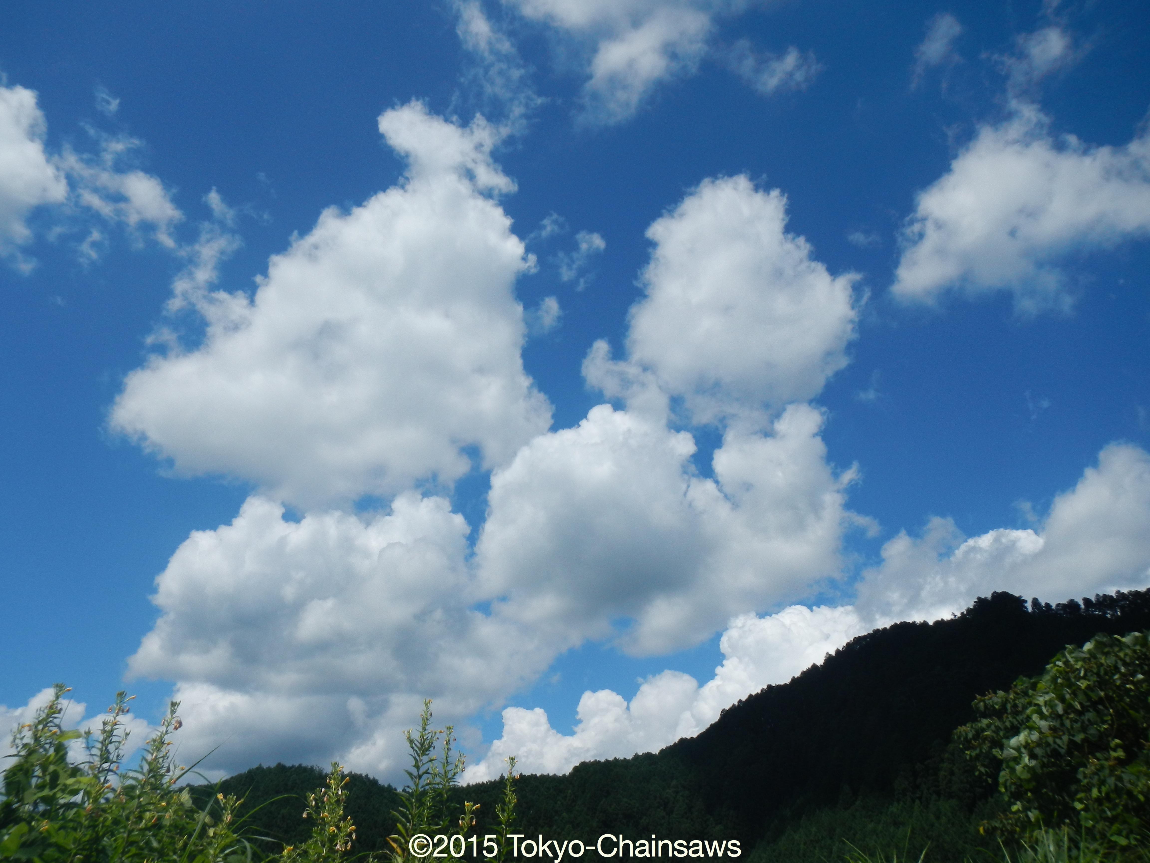 夏空(8月19日)