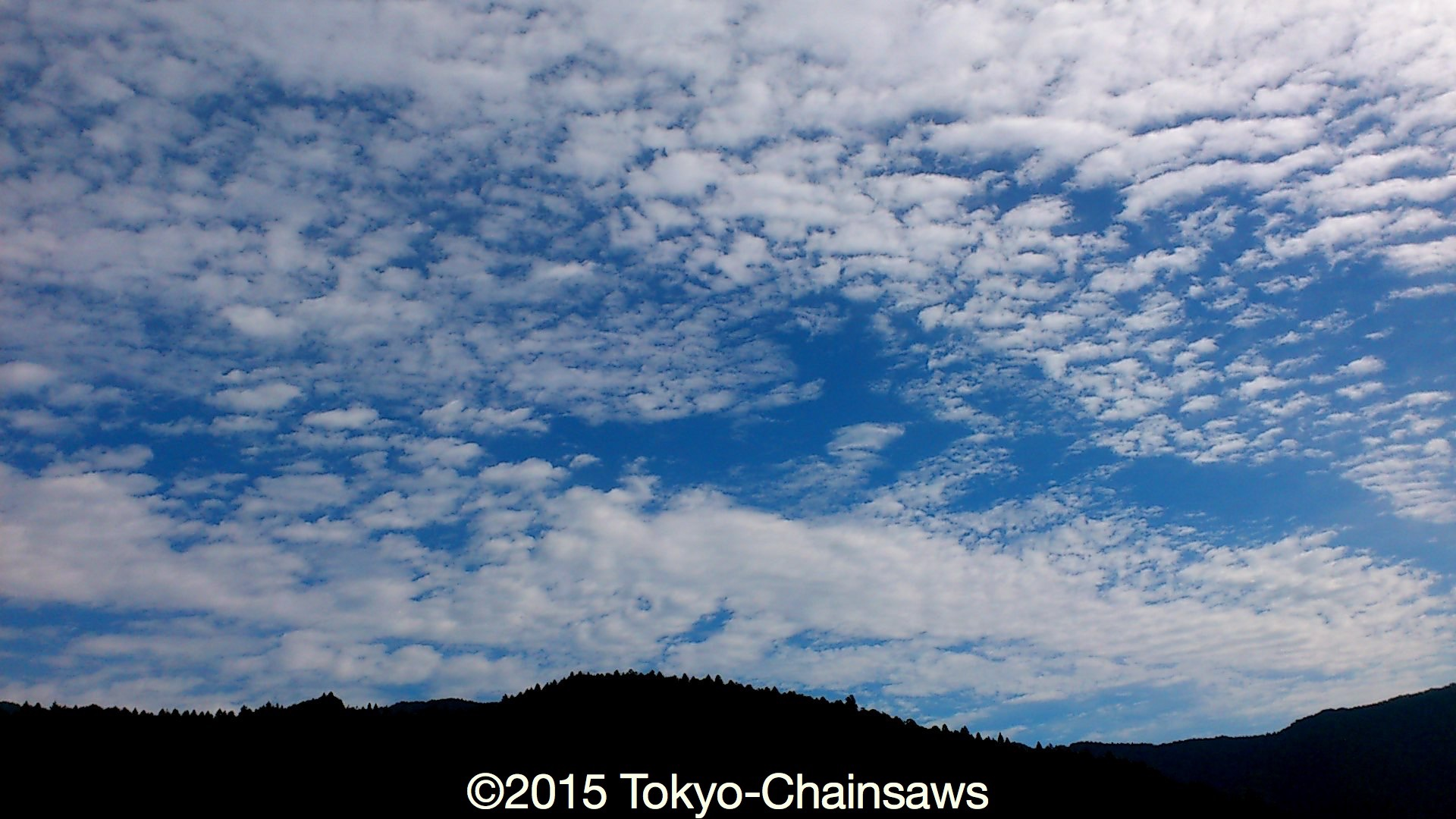 空に秋の雲(8月28日)