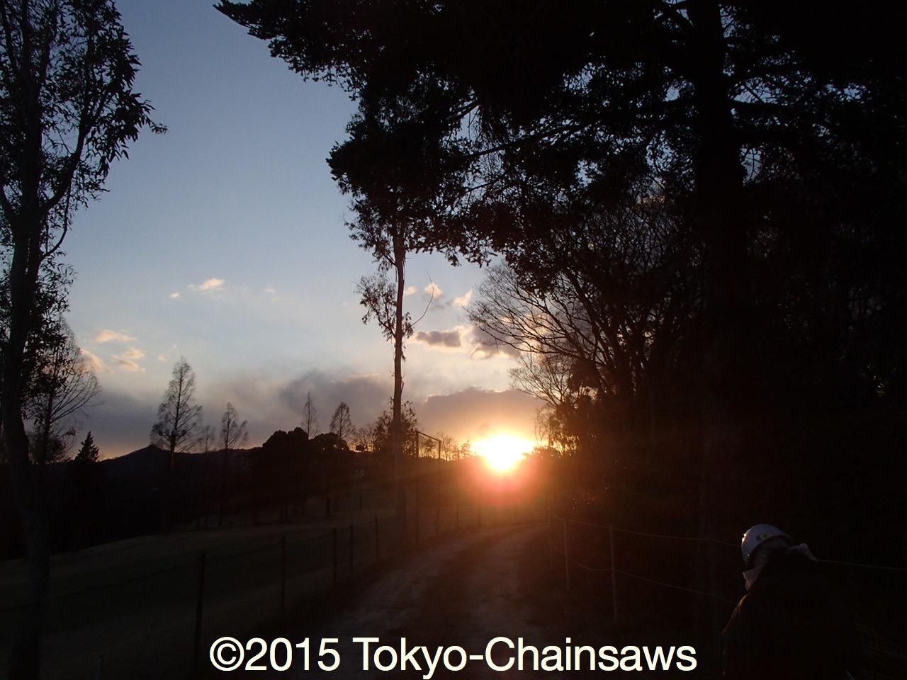 帰り道(3月25日)