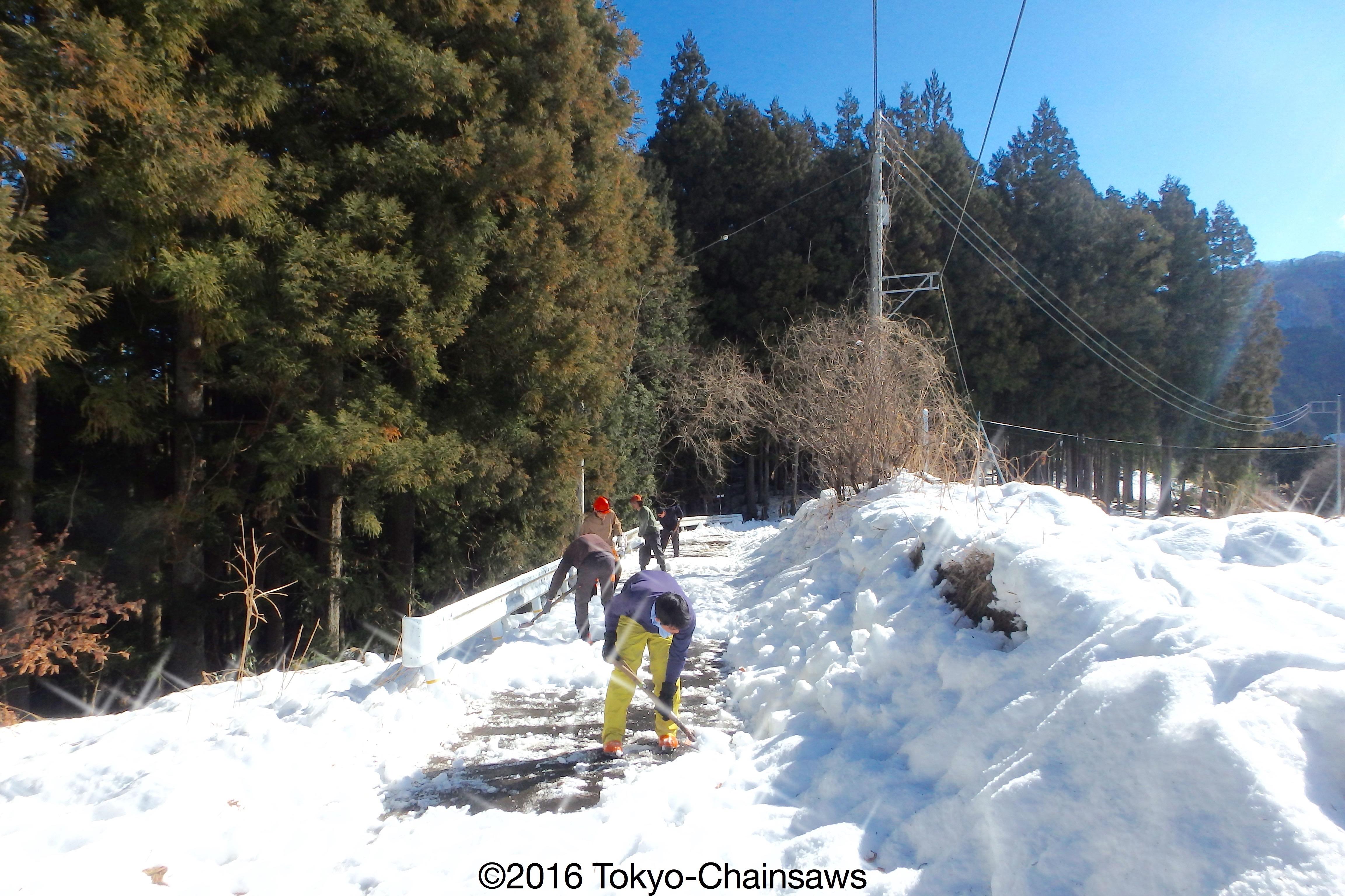 雪かき(1月22日)