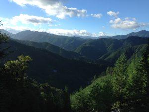 夏の音 -tanna japonensis-
