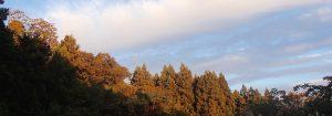檜原村の暮らし